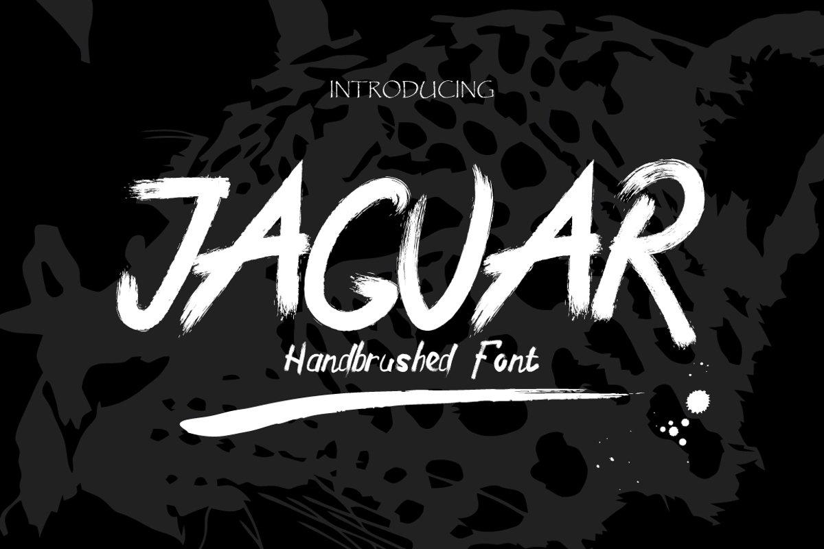 Jaguar Typeface + Swashes example image 1