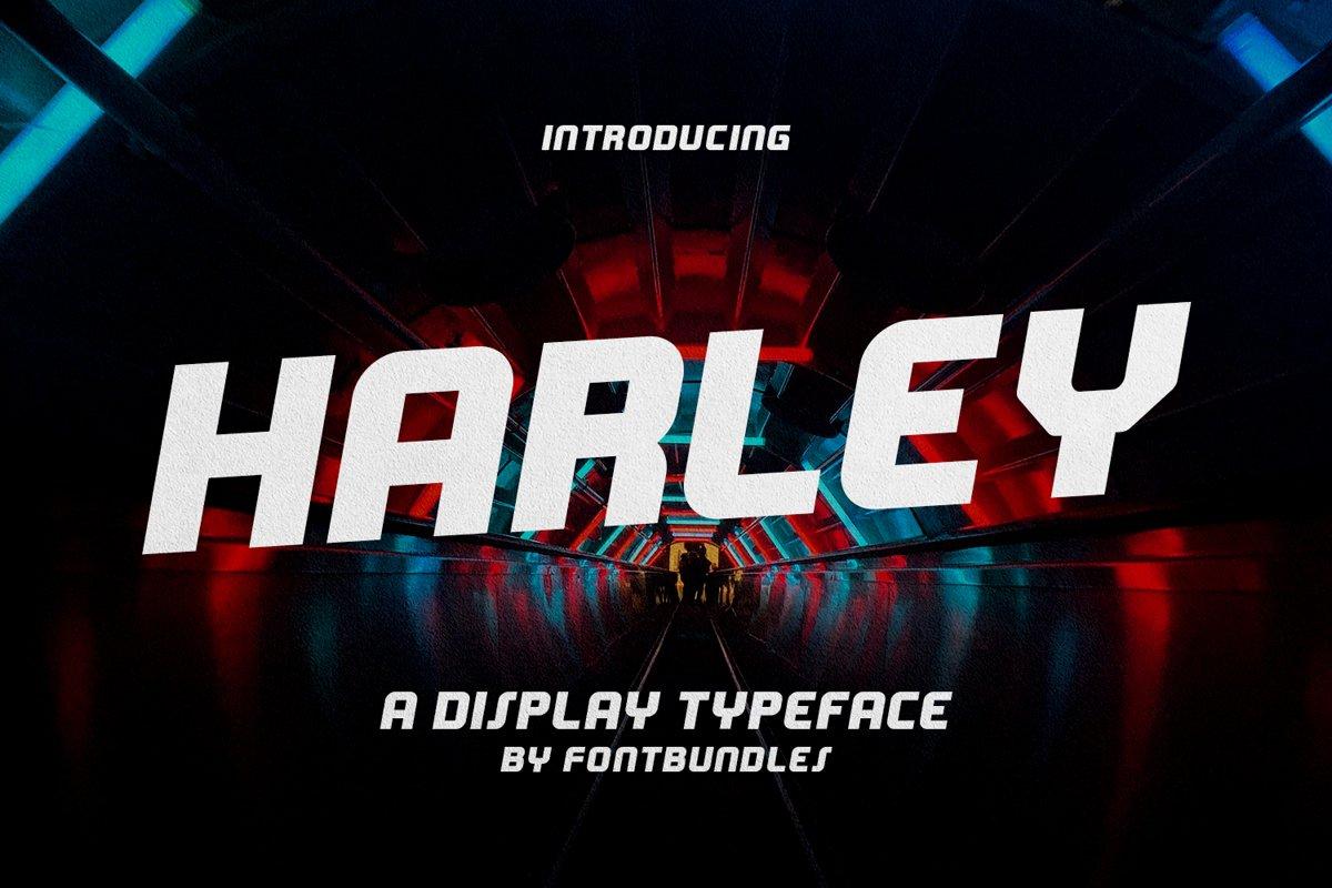 Harley example image 1