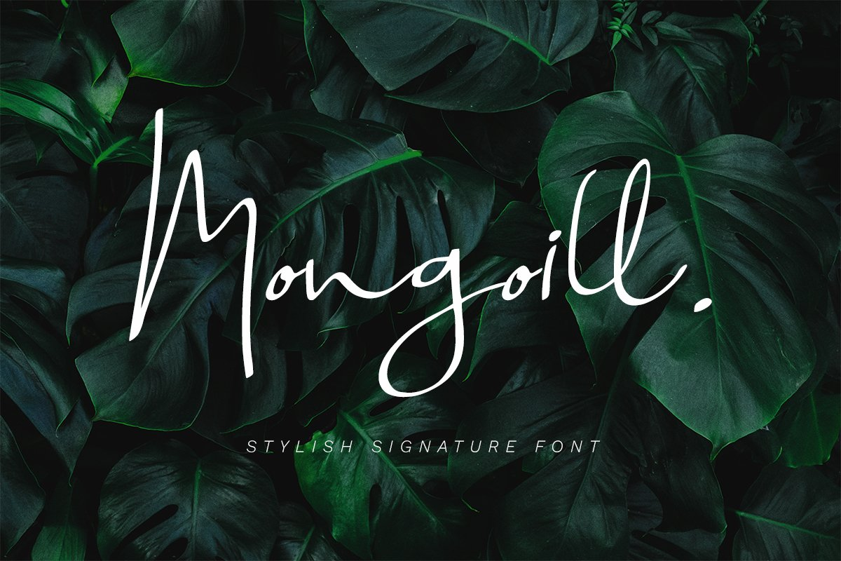 Mongoill - Stylish Signature Font example image 1