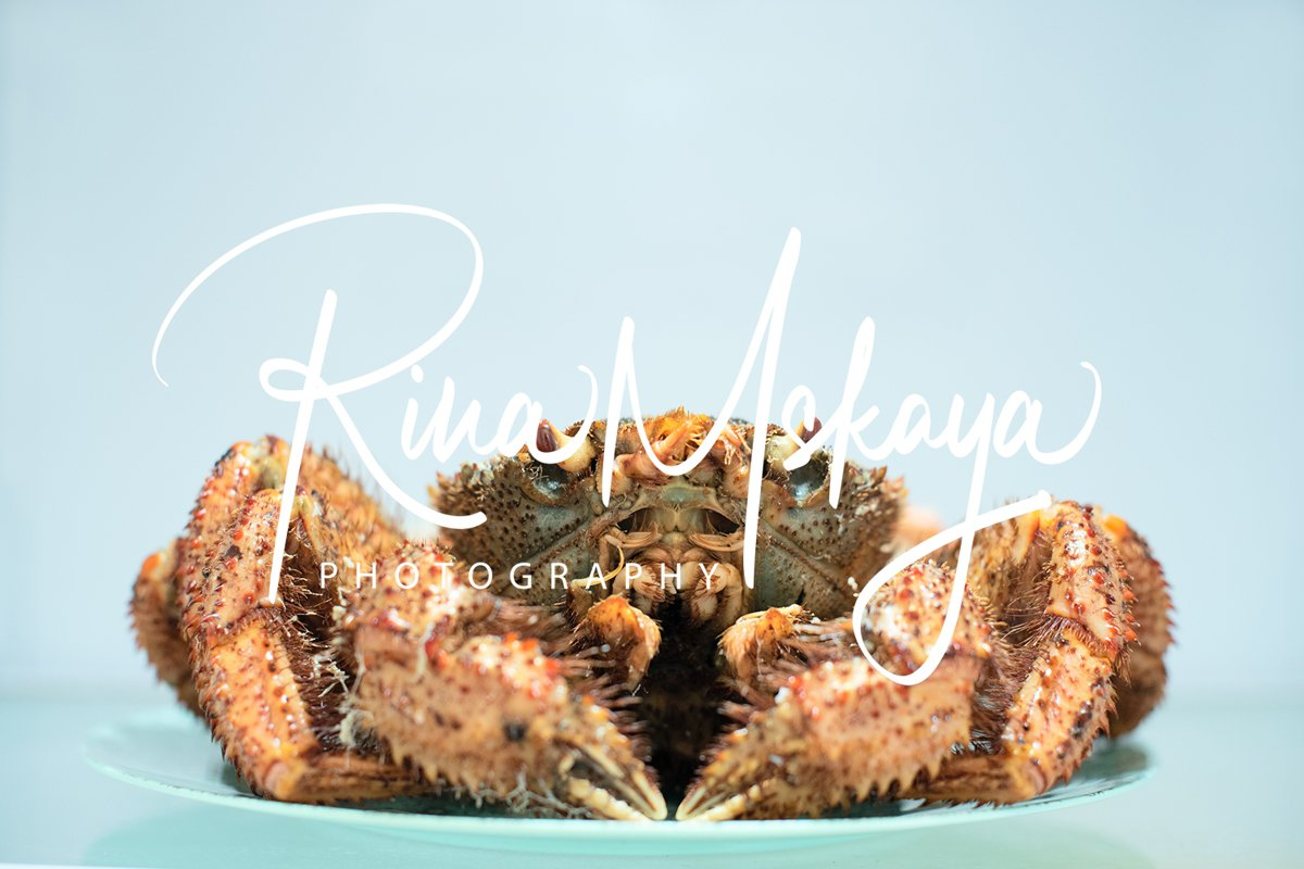 Delicious steamed crab lies on a blue plate example image 1