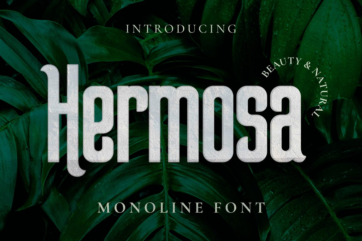 Hermosa Font example image 1