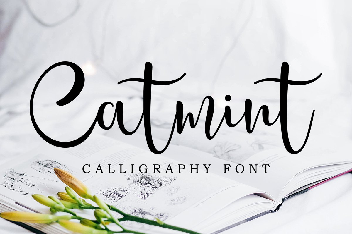 Catmint - handwritten calligraphy font example image 1