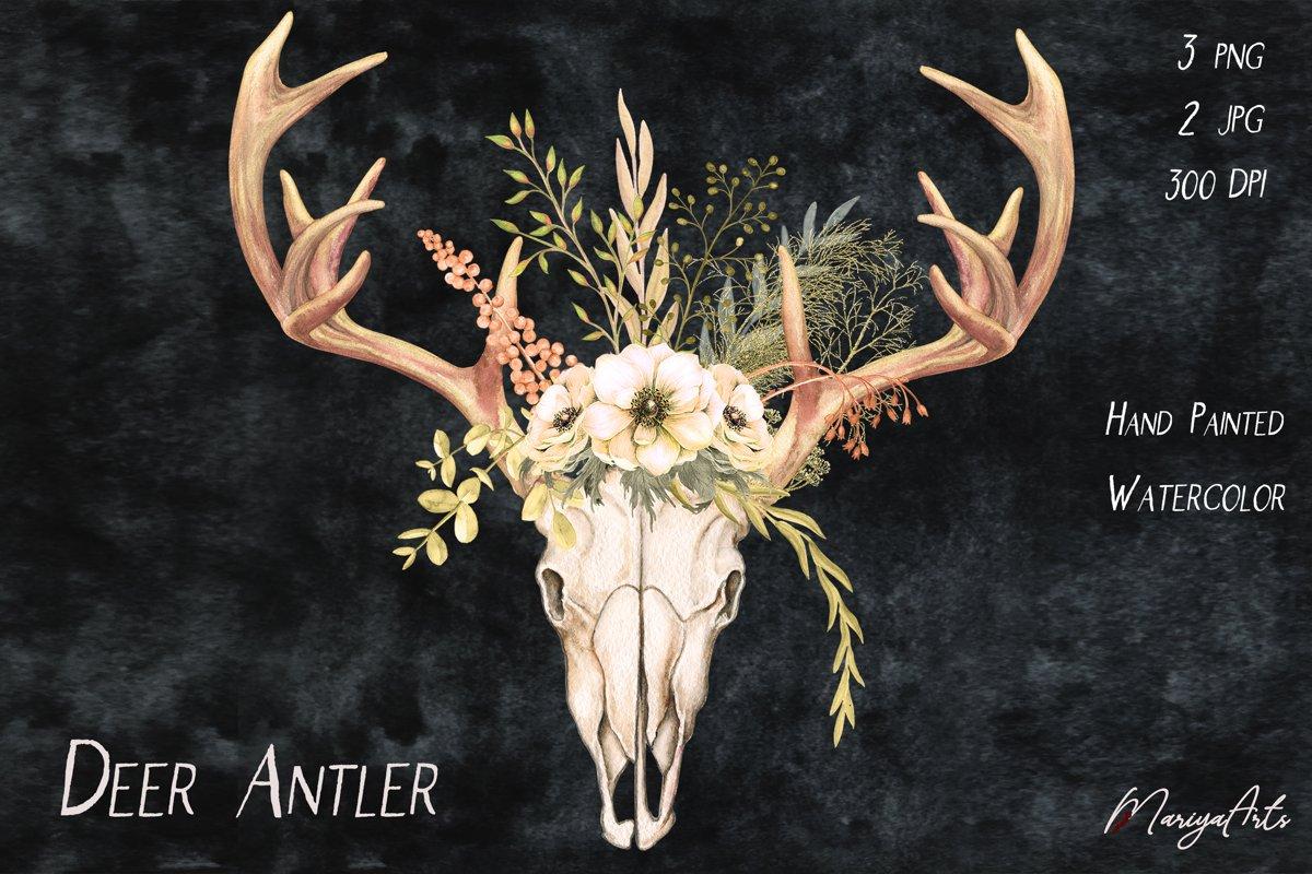 Deer Antlers and Skull, Field Flowers, Watercolor Clipart example image 1