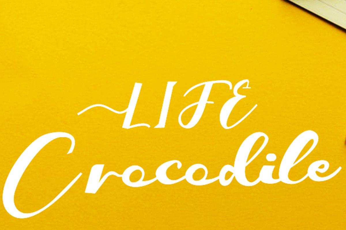 Crocodile example image 1
