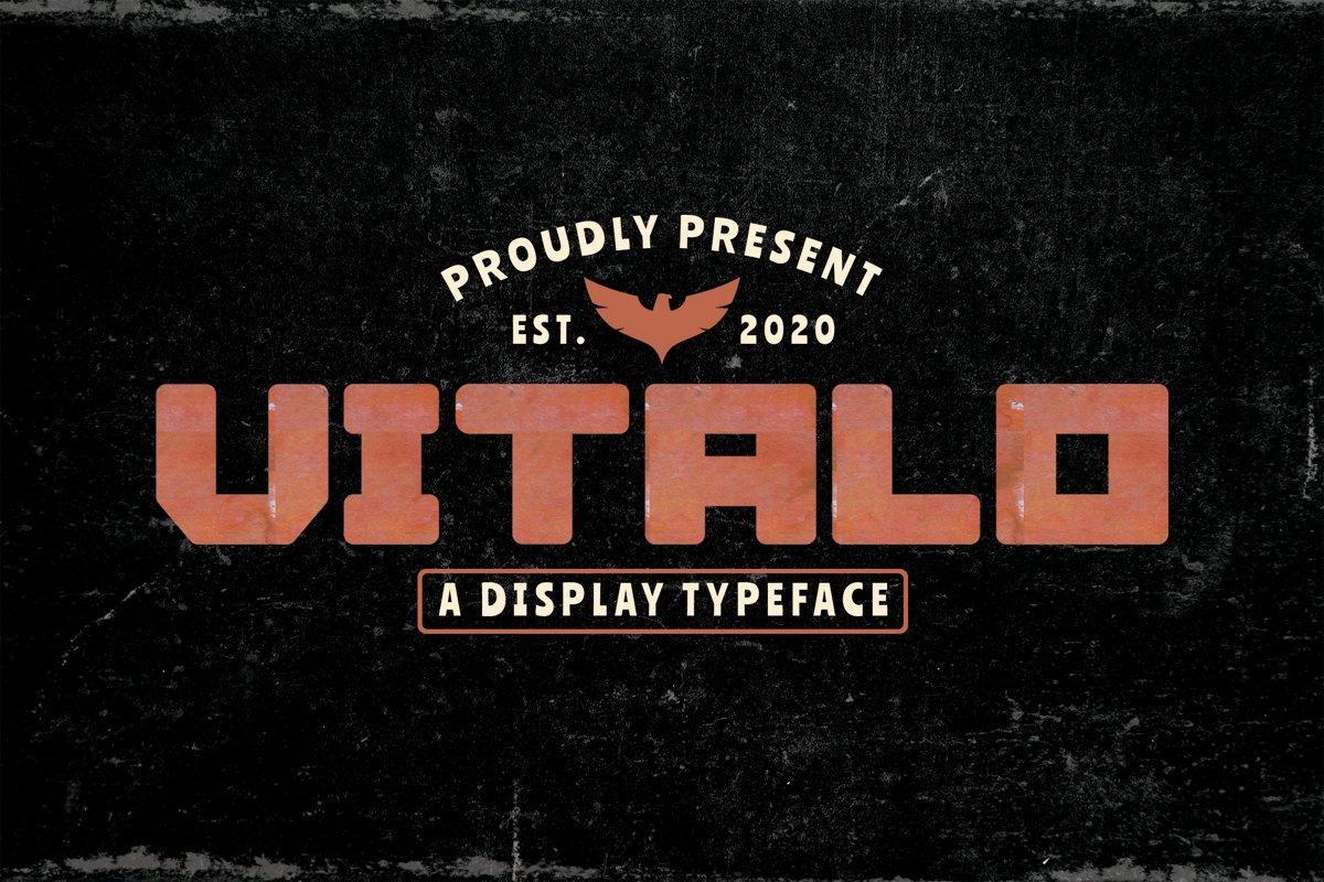 Vitalo example image 1