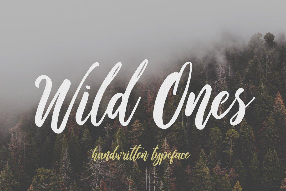Wild Ones example image 1