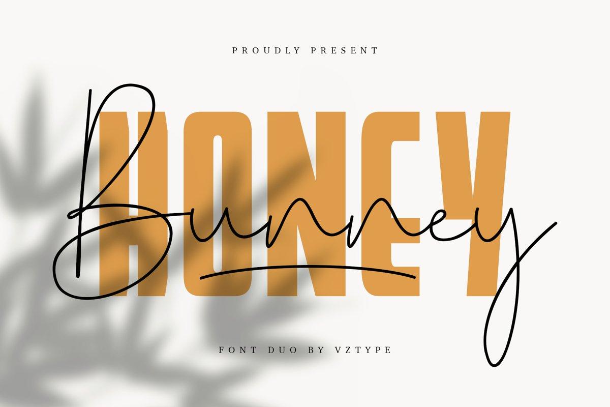 Honey Bunney Font Duo example image 1