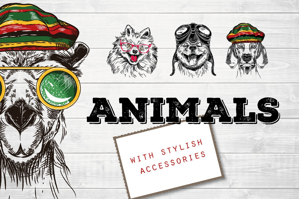 Animals with stylish accessories example image 1