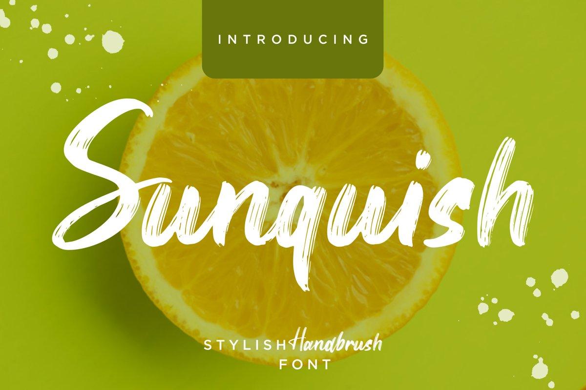 Sunquish Stylish Handbrush example image 1