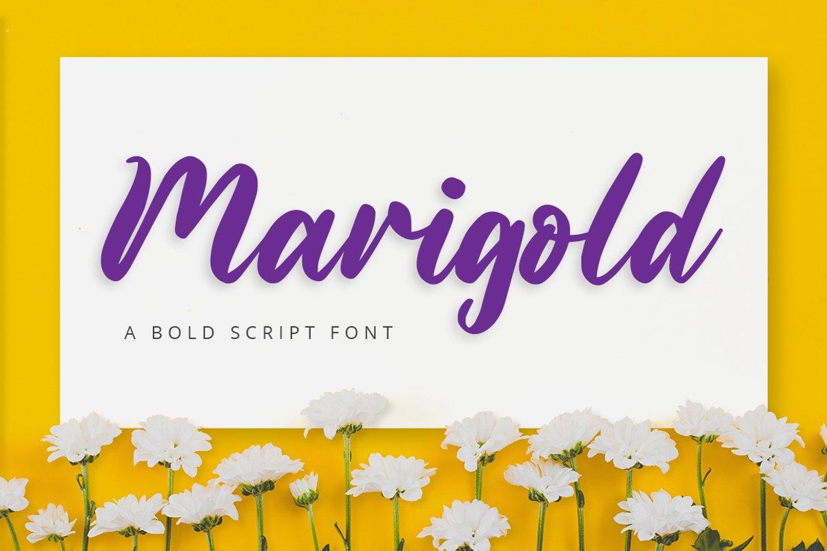 Marigold example image 1