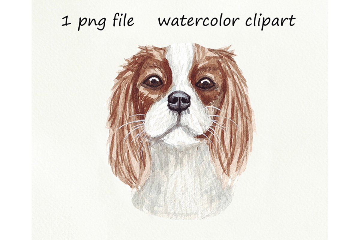 Watercolor dog png, Cavalier King Charles Spaniel, hand d example image 1