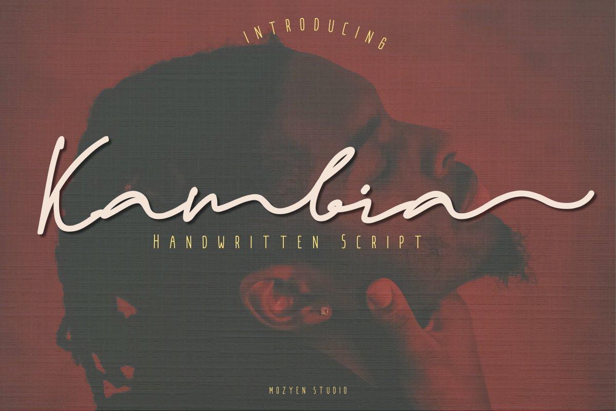 Kambia example image 1