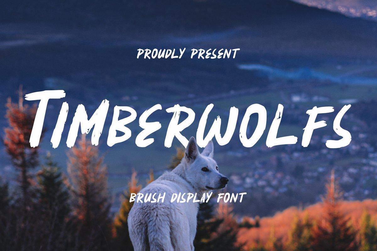 Timberwolfs Font example image 1