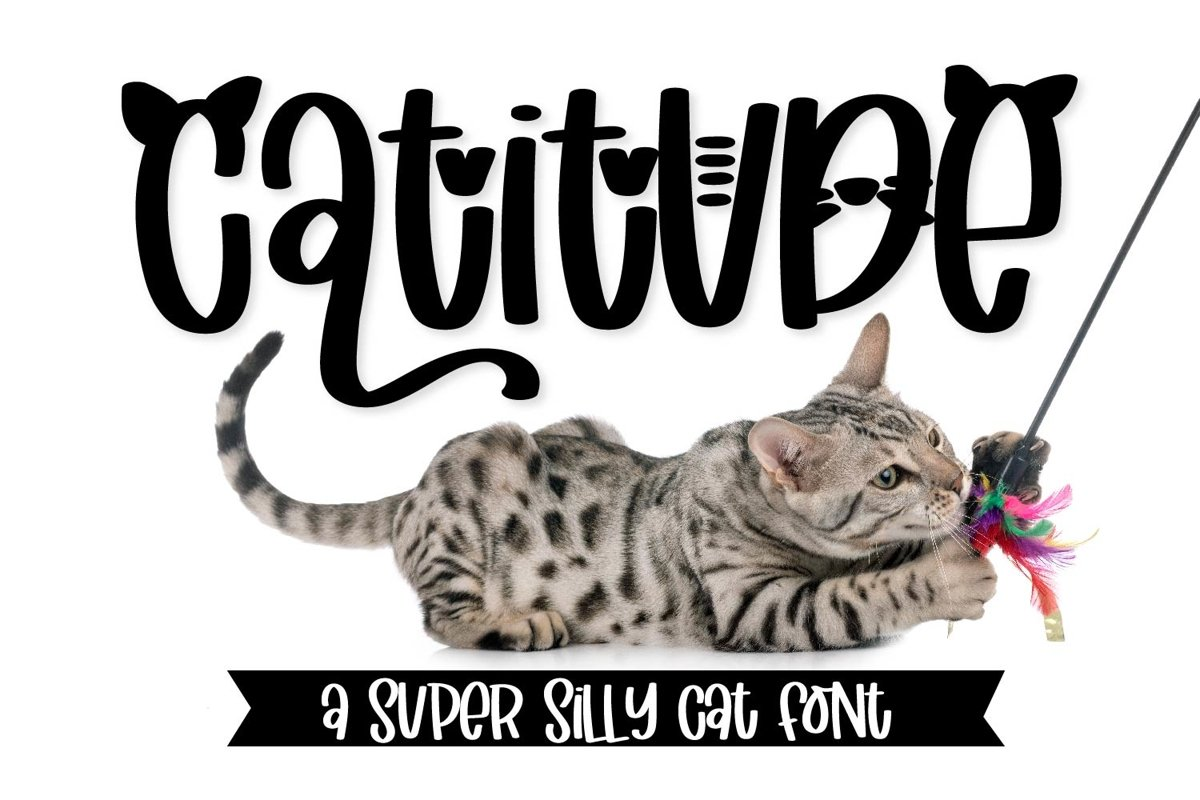 Catitude - A sassy cat font example image 1