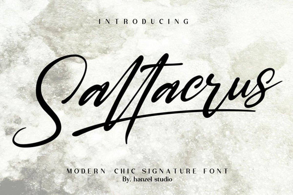 Saltacrus//Chic Signature Font example image 1