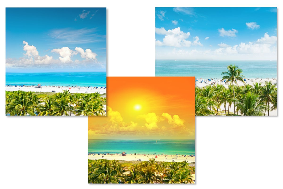 Landscape with blue sky palm trees. Sunset 3 JPG example image 1
