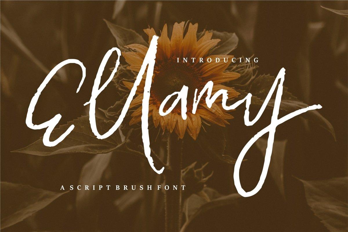 Ellamy - Script Brush Font example image 1