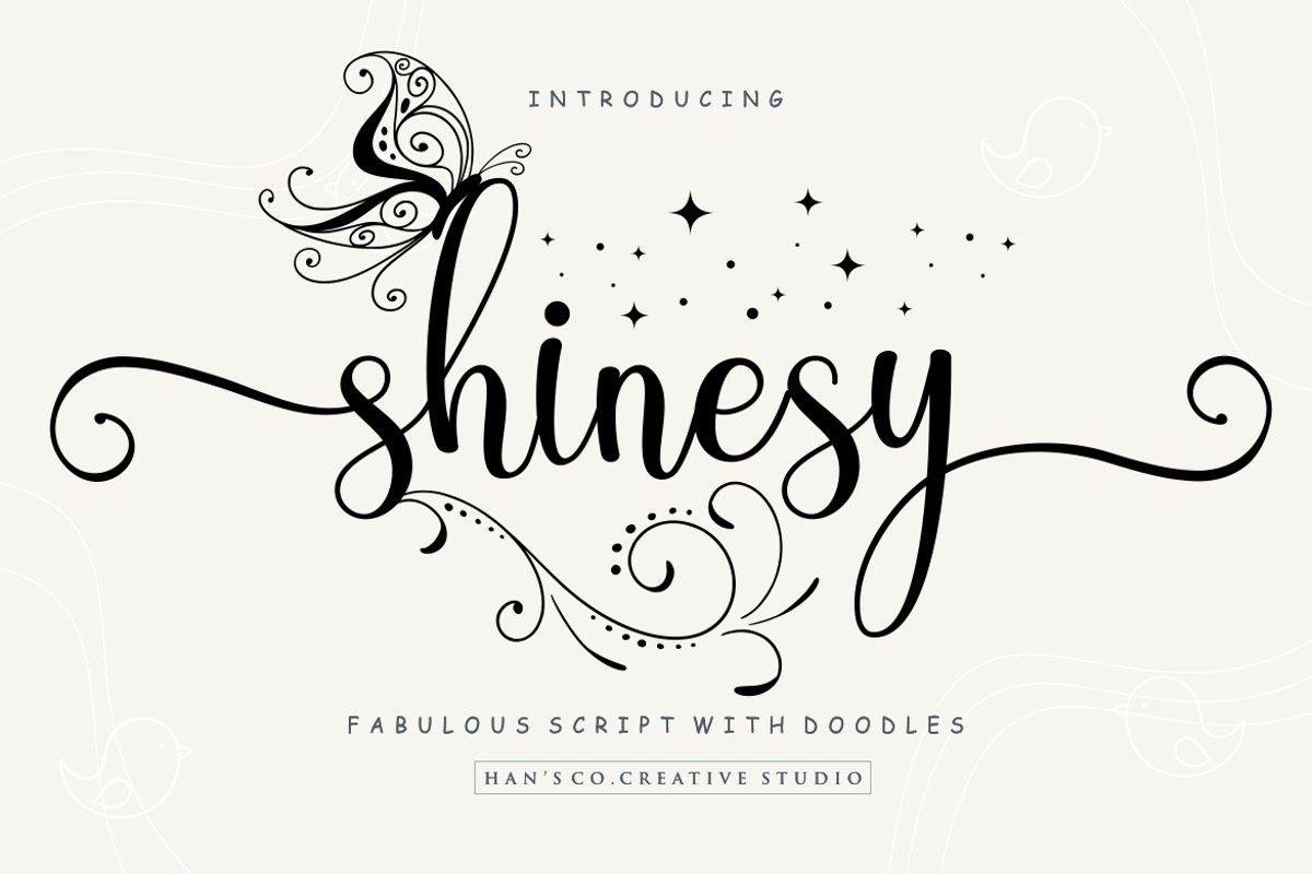 Shinesy example image 1