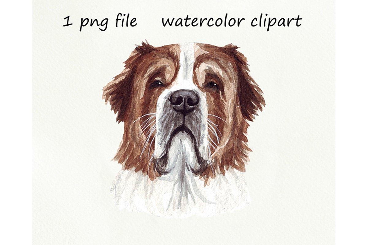 Watercolor dog png, Dog St. Bernard, hand drawn example image 1
