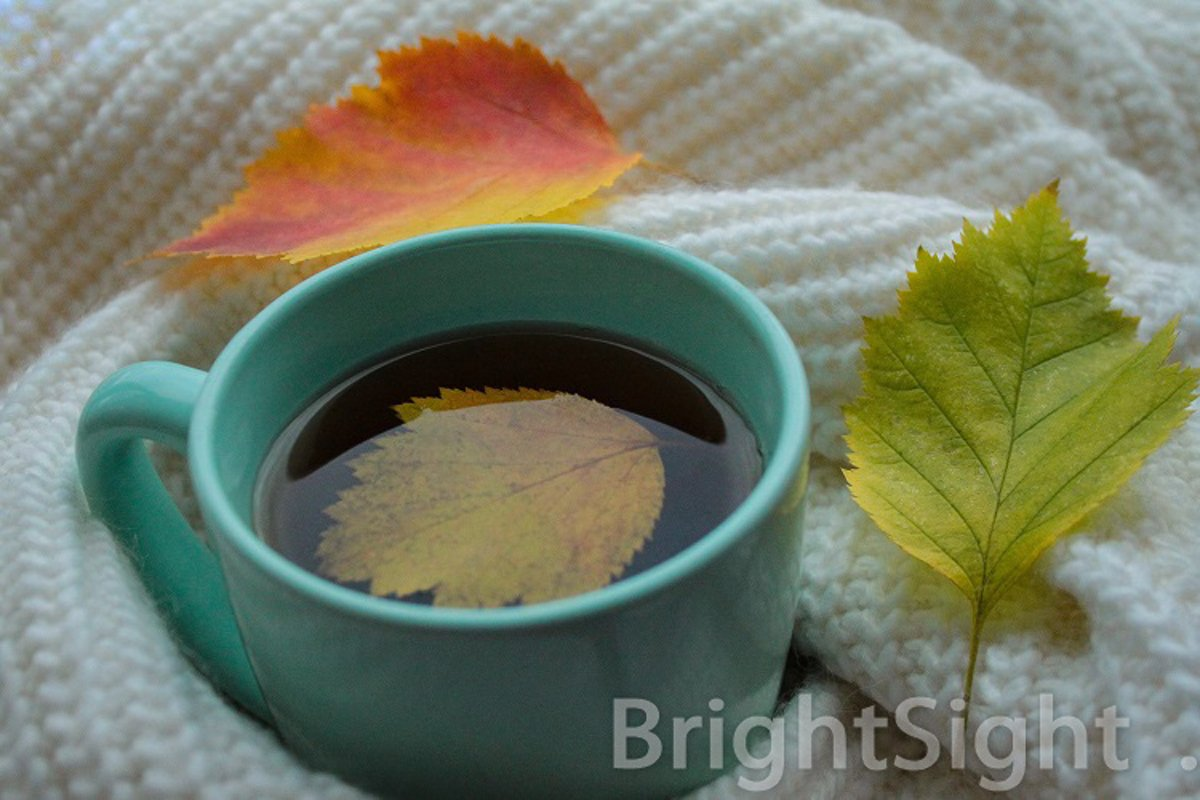 Autumn mood - sweater, leaves & cup example image 1