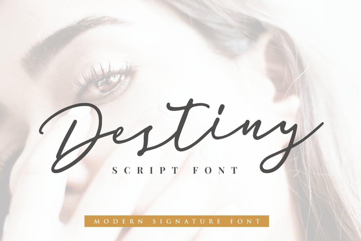 Destiny Signature Font example image 1