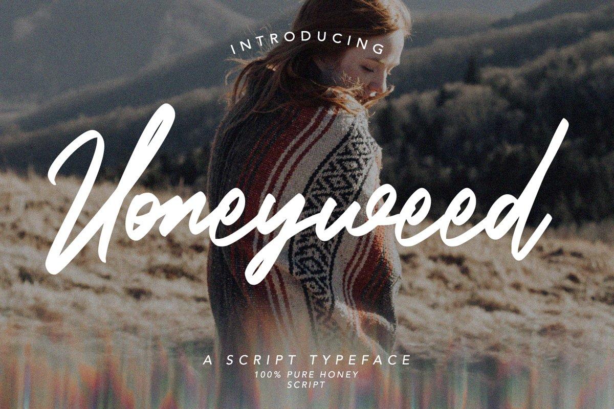 Honeyweed - Script Typeface Font example image 1