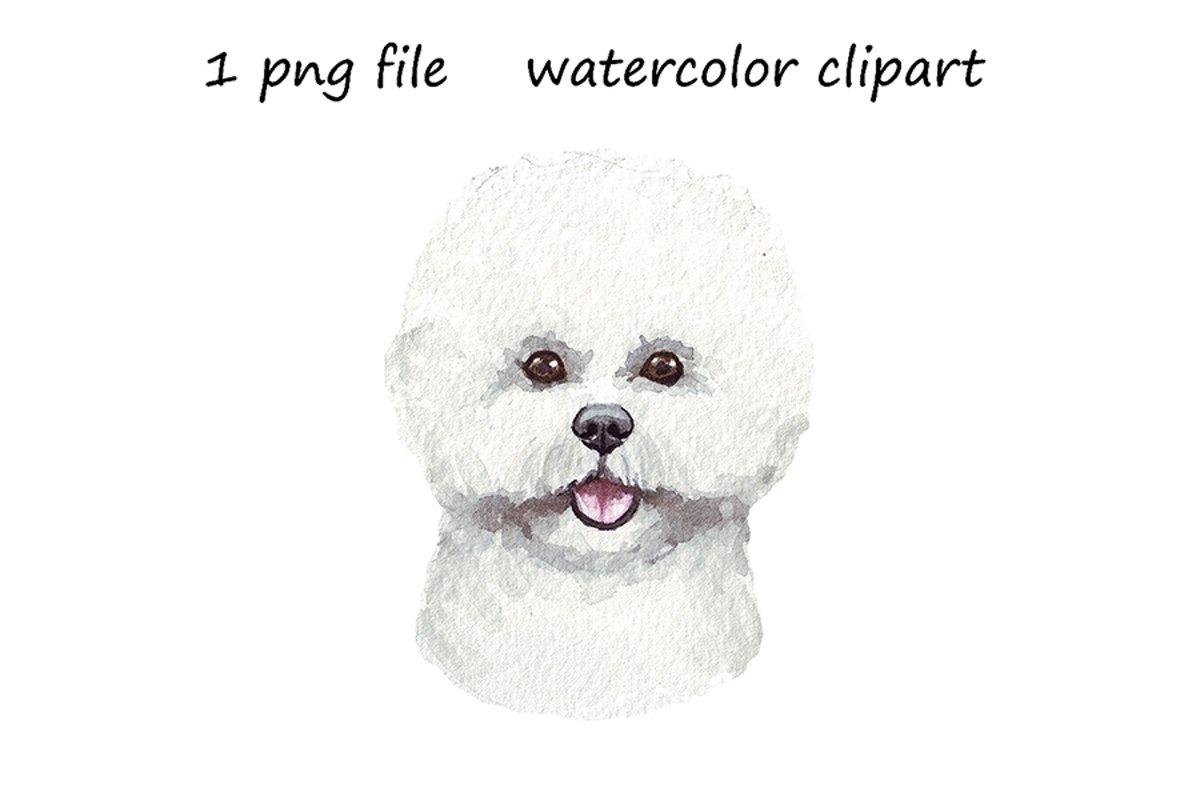 Watercolor dog png, Bichon Frise dog, hand drawn example image 1