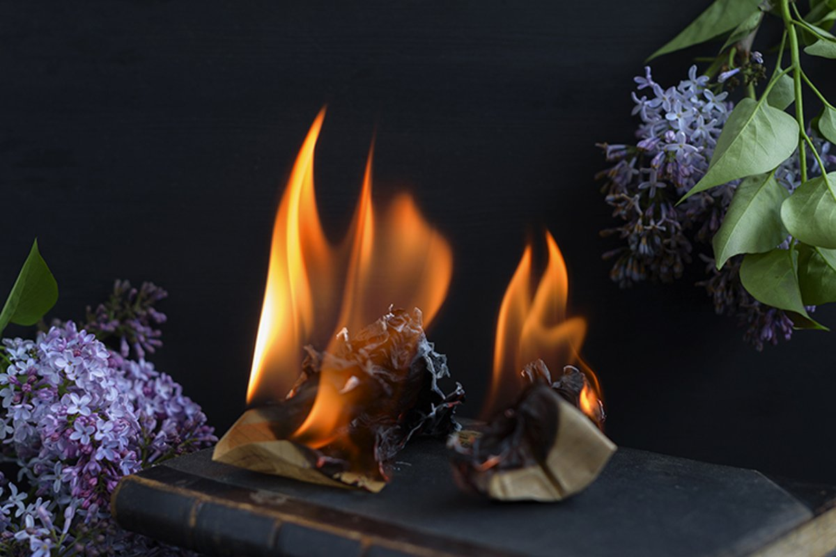 book is burning example image 1