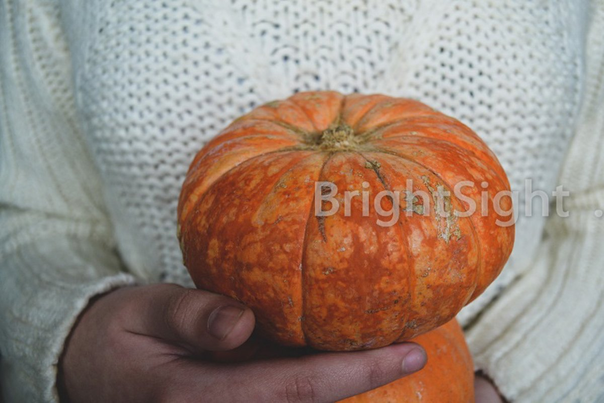 Holding pumpkins example image 1