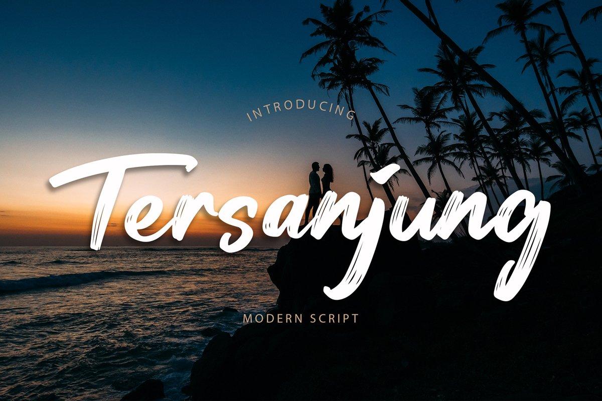Tersanjung Modern Script Brush Font example image 1