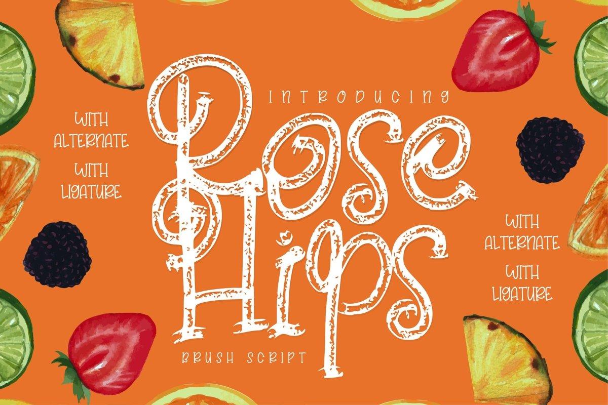 Rose Hips | Decorative Fruit Font example image 1
