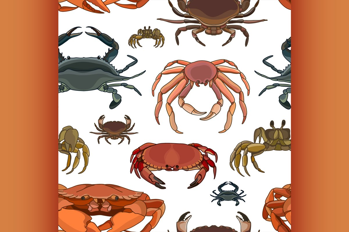 Crabs vector set pattern example image 1