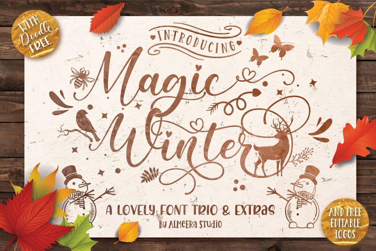Magic Winter Font Trio & Extras example image 1