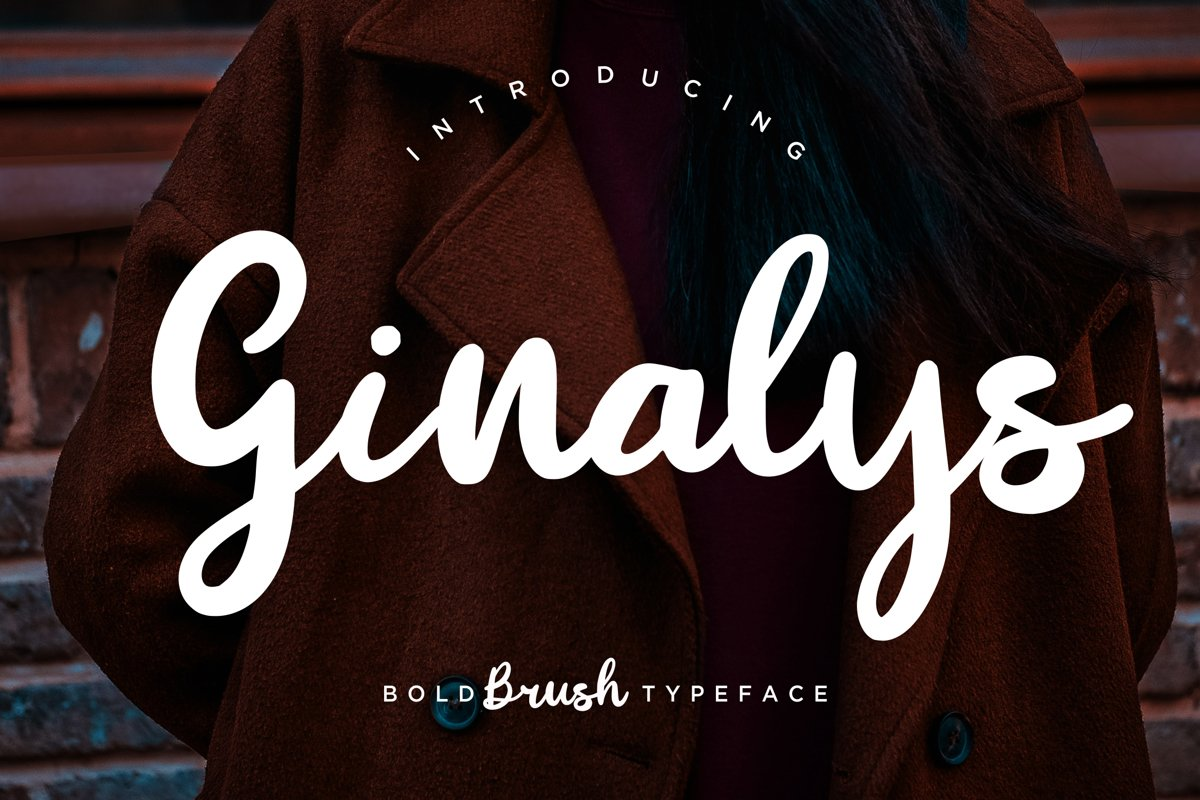 Ginalys Bold Brush example image 1