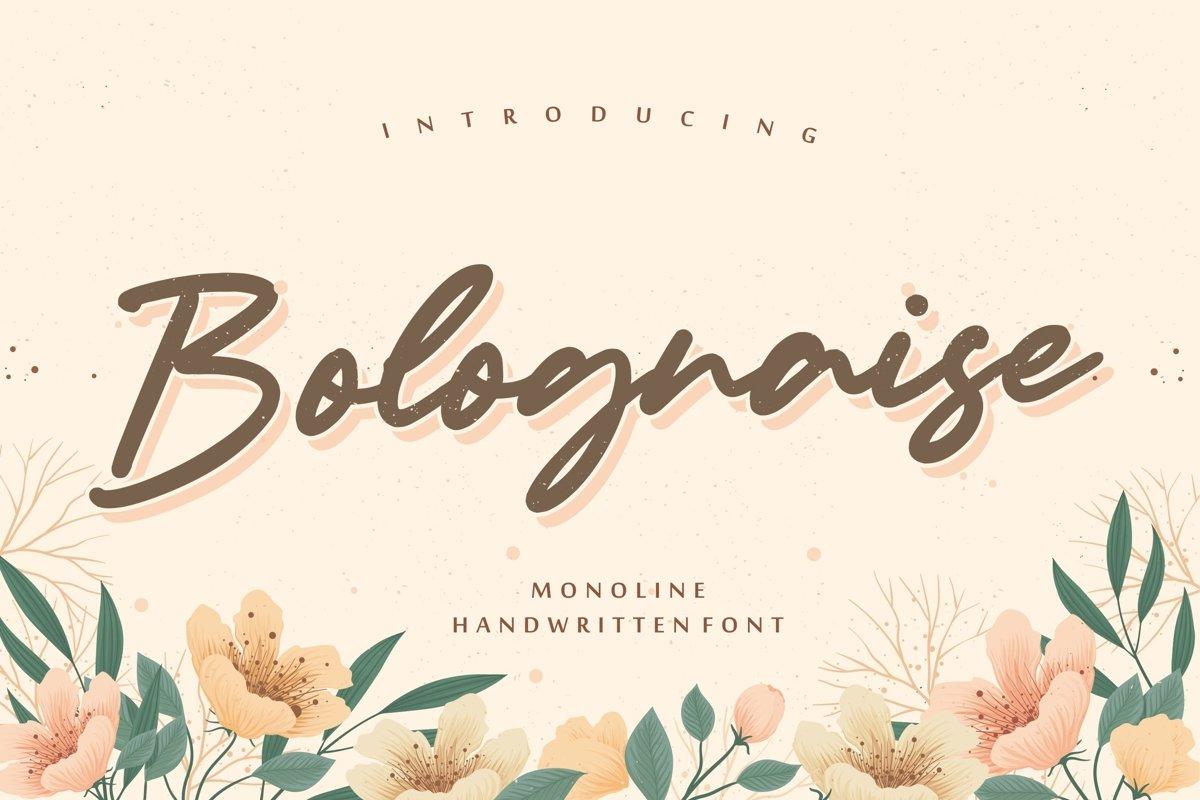 Bolognaise Monoline Handwritten Font example image 1