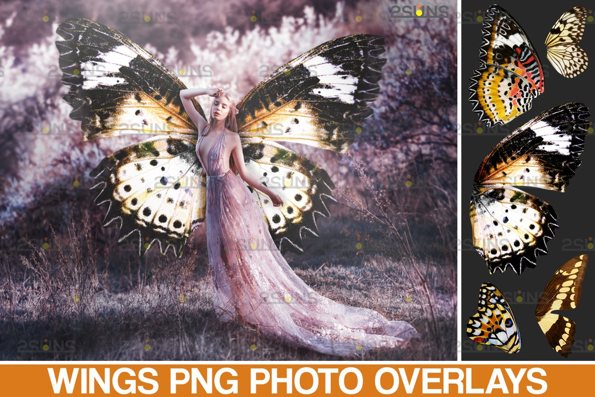 Colorful Butterfly Wings Photoshop Overlay example image 1