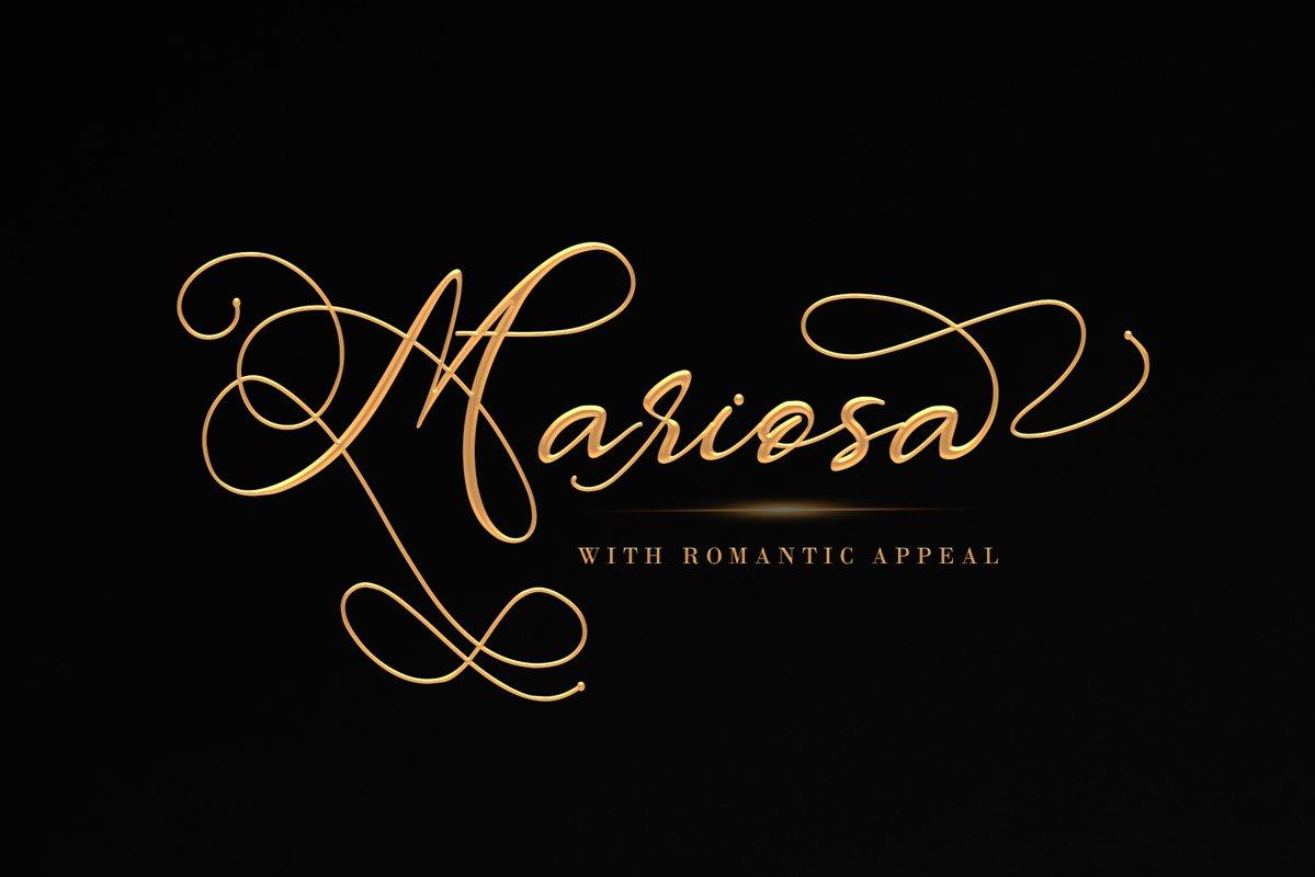 Mariosa example image 1