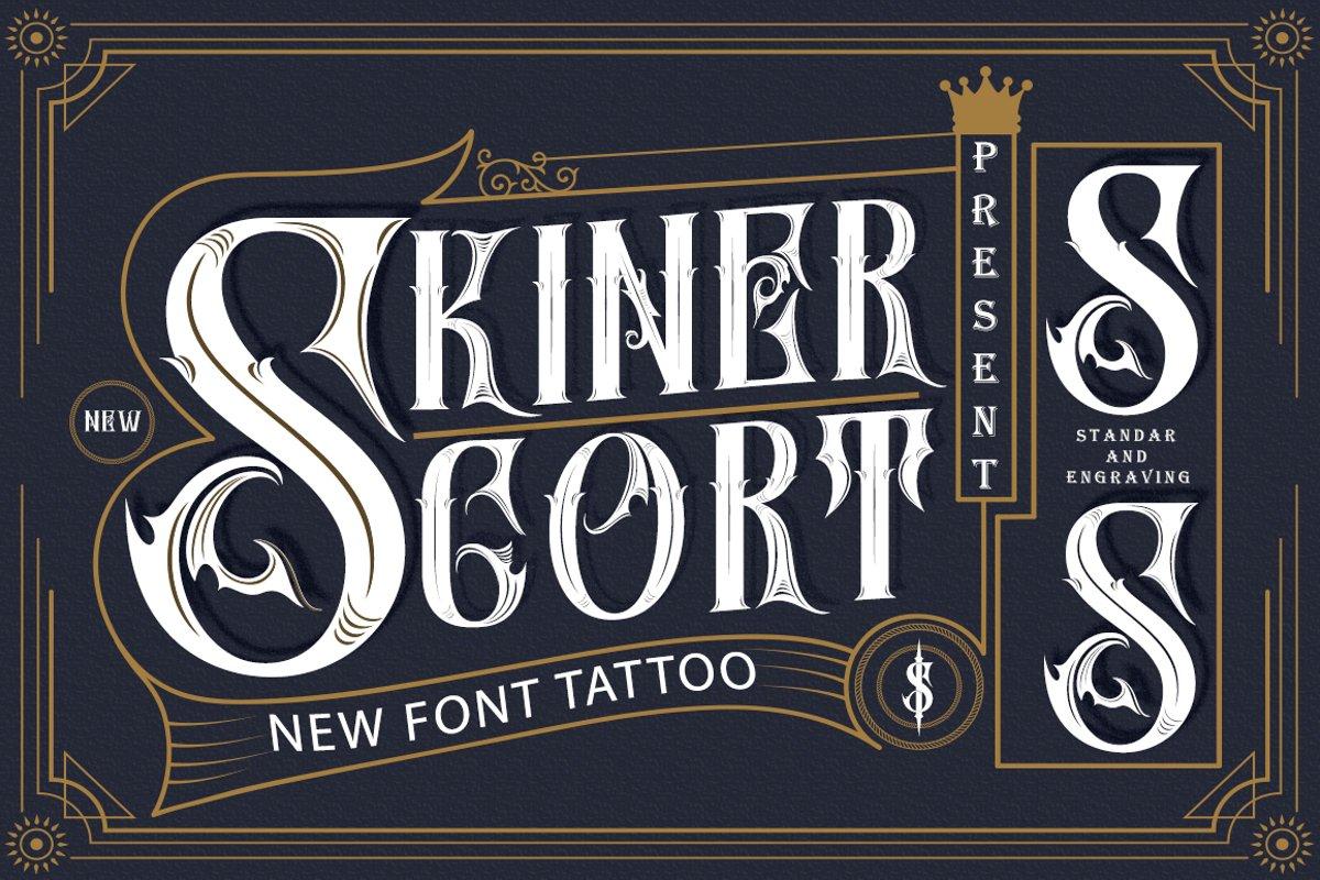 SKinerScort example image 1