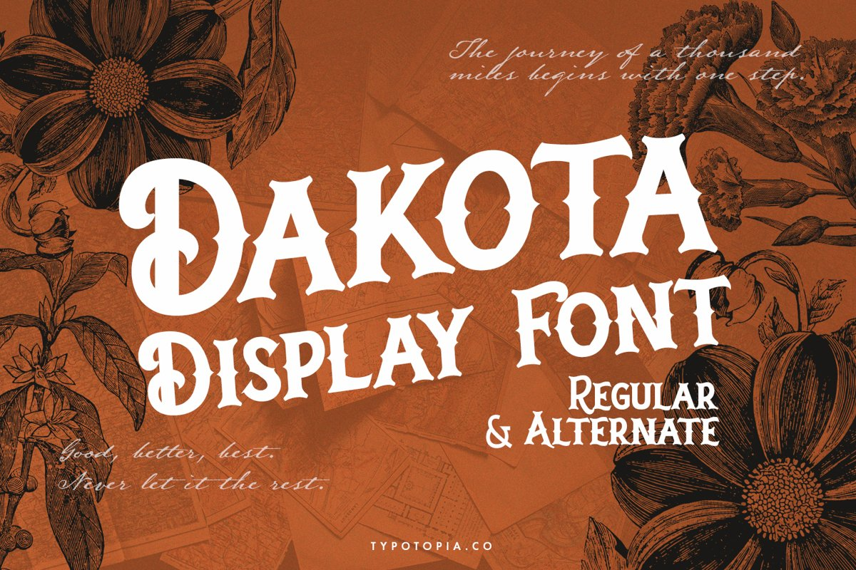 Dakota Font example image 1
