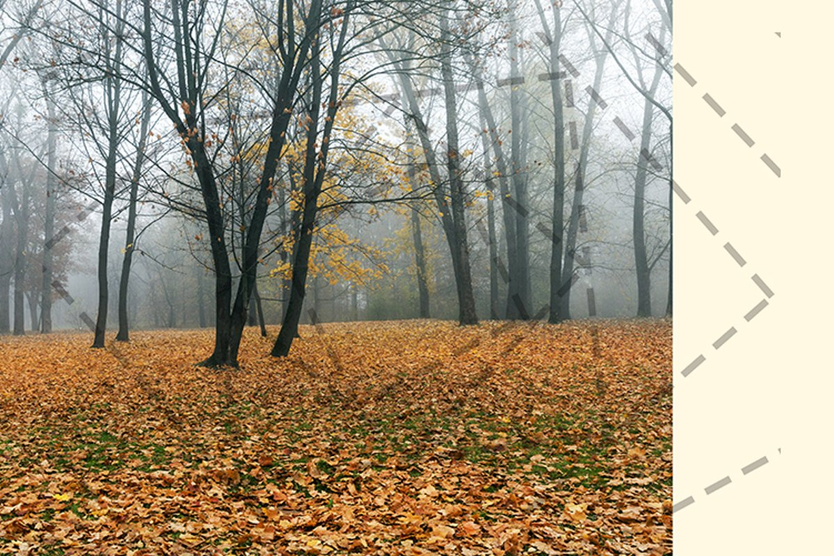 late autumn in the park example image 1