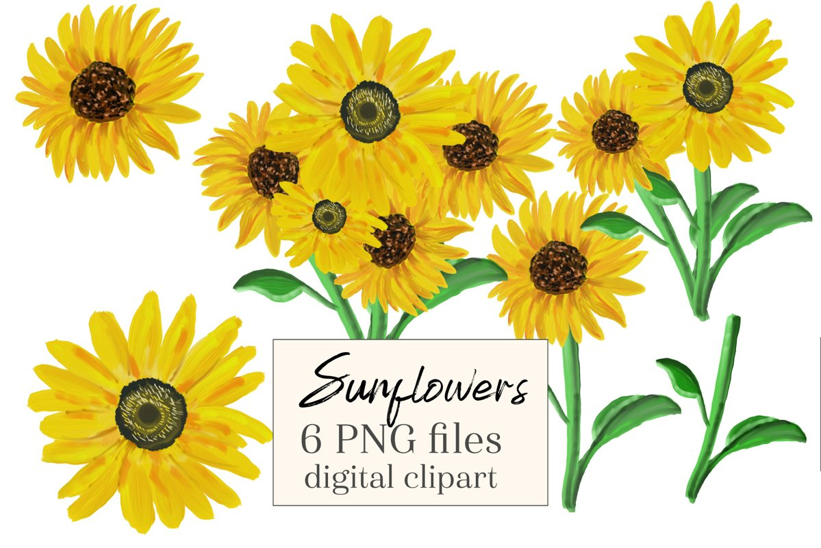 Sunflower PNG transparent background example image 1