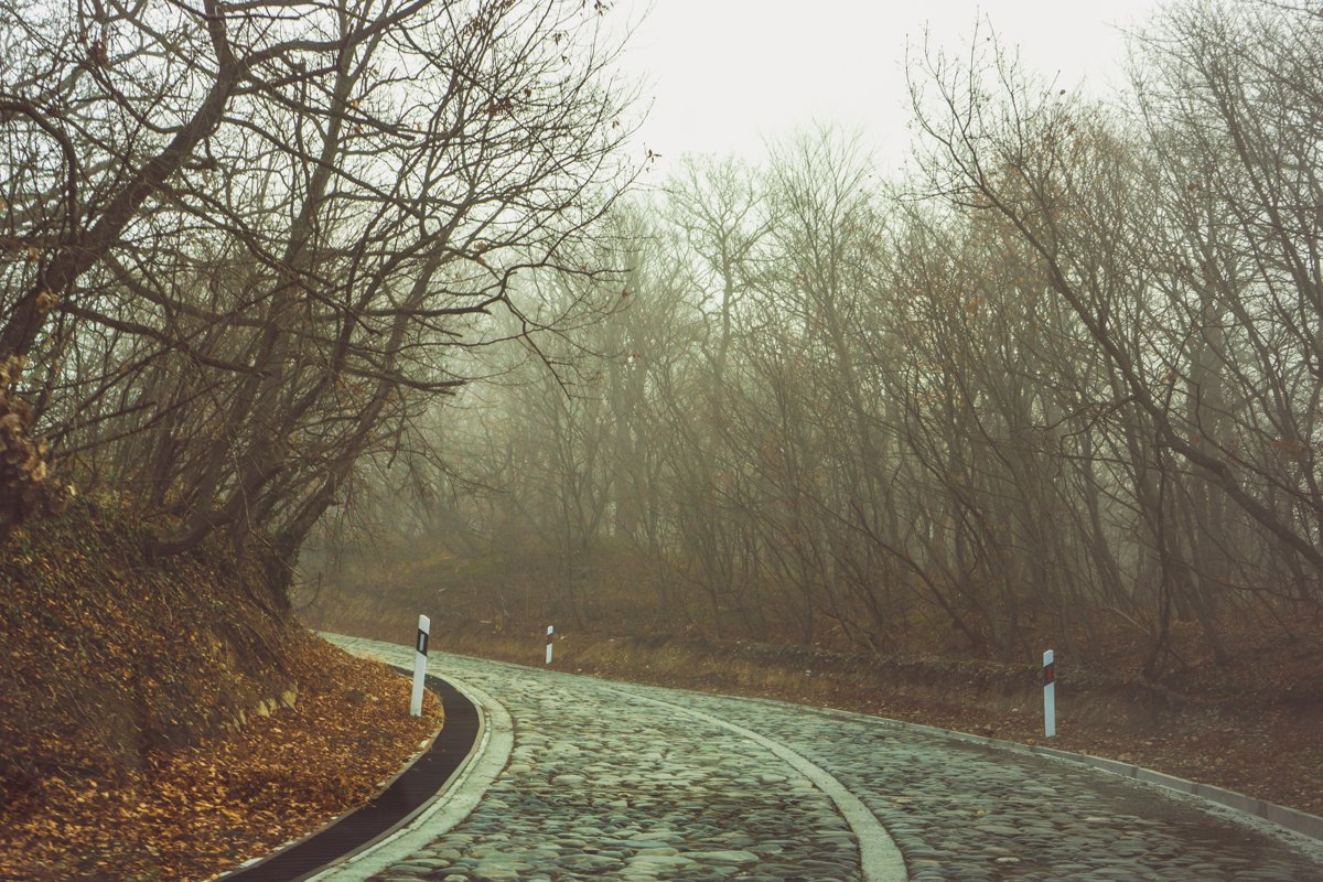Road in the misty autumnal forest example image 1