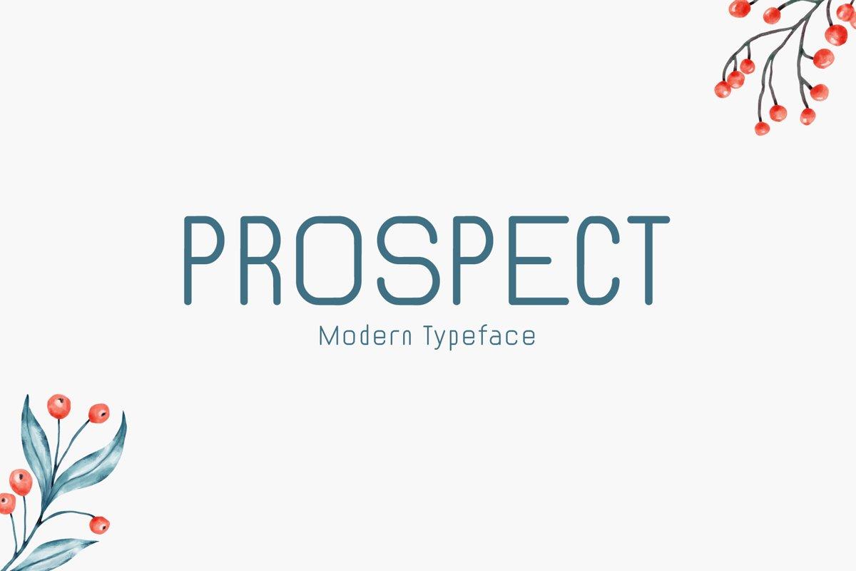 Prospect example image 1