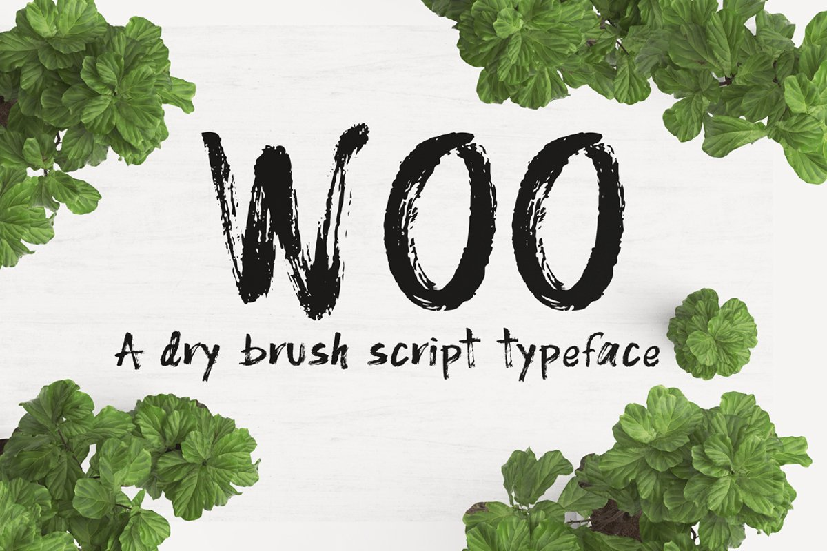 WOO Dry Brush Script Typeface example image 1