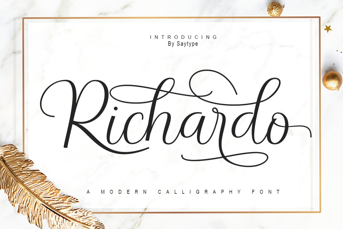 Richardo Script example image 1