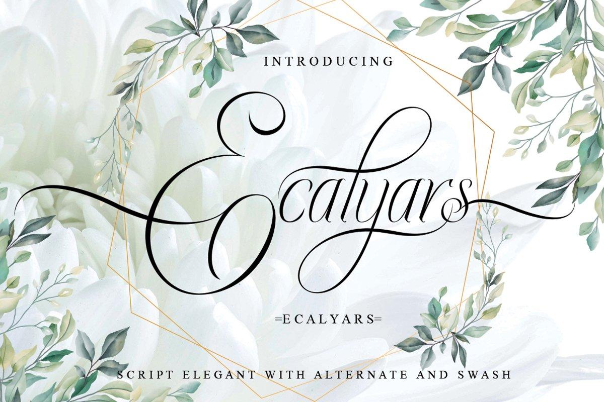 Ecalyars example image 1