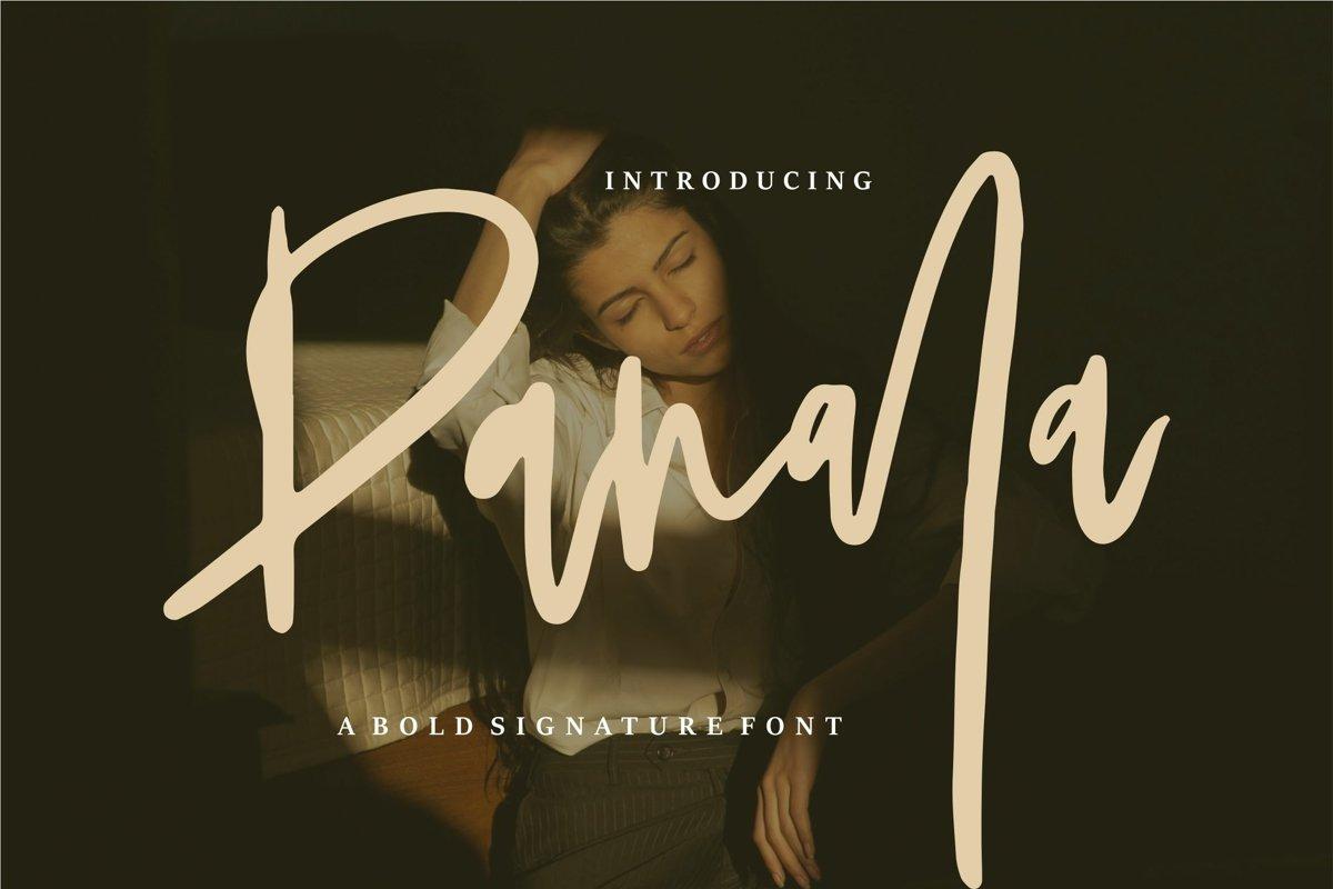 Panala - A Bold Signature Font example image 1