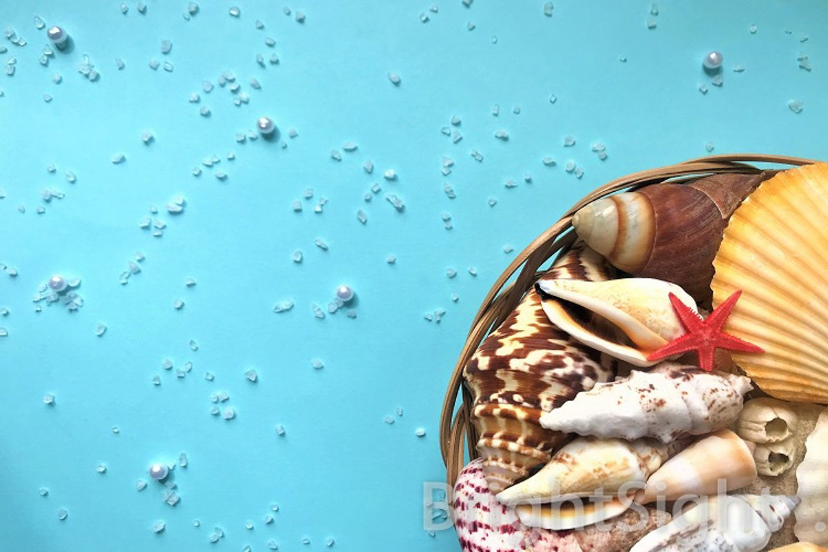 Seashells in a basket on turquoise background example image 1