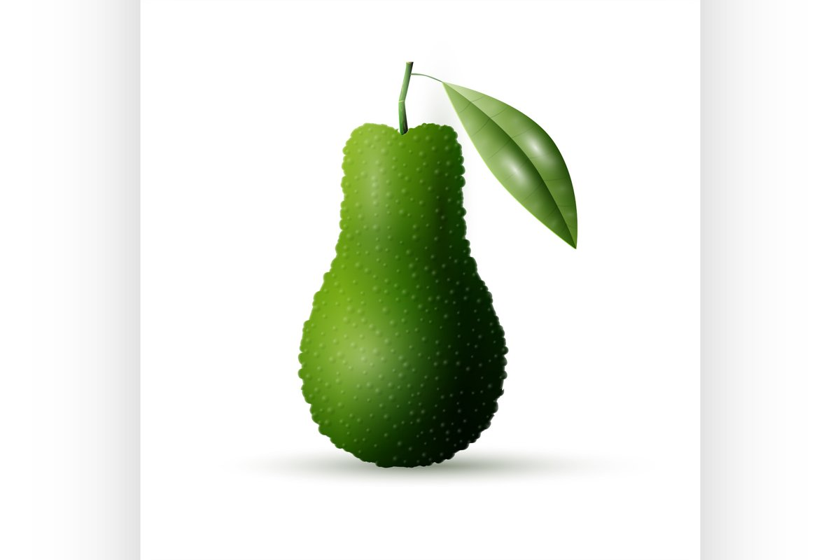 Realistic vector avocado example image 1