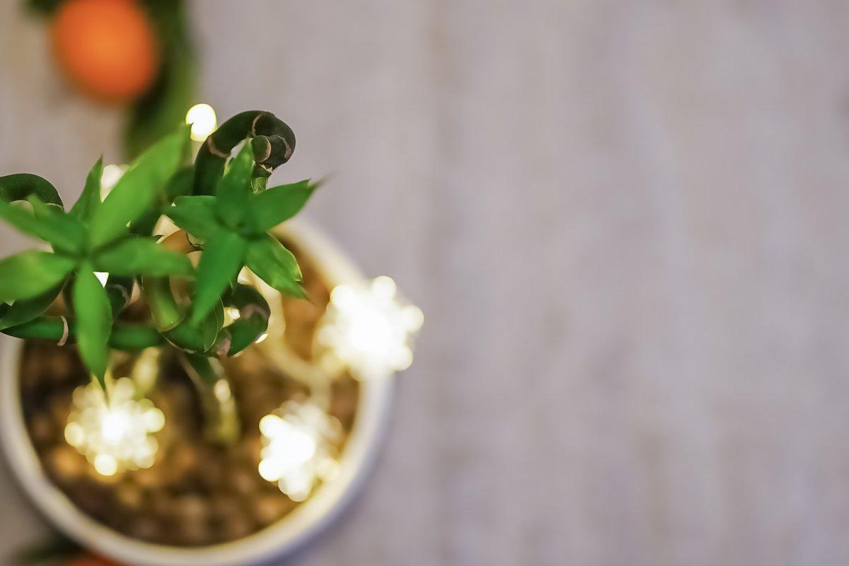 Christmas background. Postcard with mandarin, lights example image 1